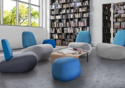 AMBIANCE FAUTEUILS BIBLIOTHEQUE2